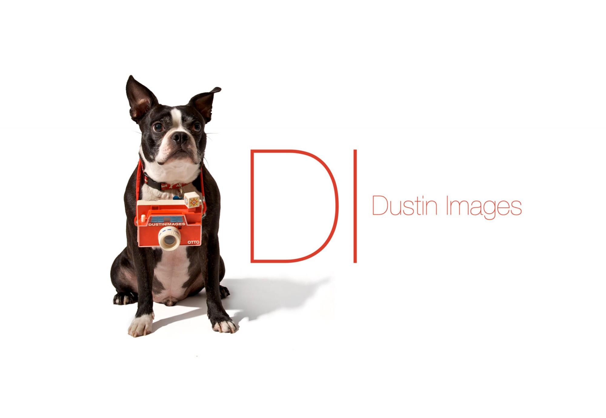 Dustin_Images_Logo_otto